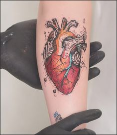 39 Inspiring Anatomical Heart Tattoos | Anatomical heart, Tattoo ...