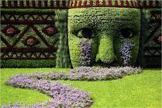 Creative topiary artwork