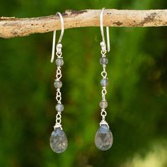 Labradorite dangle earrings, 'Lady' at The Animal Rescue Site