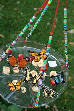 Butterfly feeder made with disposable plate and beads. Fun project to do with kids!