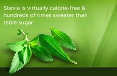 Stevia: The Perfect Slow Carb Sugar Substitute