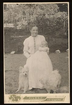 Cab Woman w Child and 2 Dogs Europe 1900s   eBay