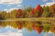 Brockway Lake, Autumn in Mecosota County, Michigan