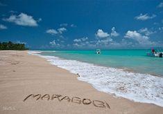 Maragogi é um município da Microrregião do Litoral Norte Alagoano, na Mesorregião do Leste Alagoano, no estado de Alagoas, no Brasil. O grande atrativo de Maragogi são as incríveis psicinas naturais presentes no meio do mar.  Verdadeiro aquários de águas cristalinas, esse lugar atrai turistas o ano inteiro em busca de beleza, diversão e contato com a natureza.