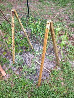DIY watermelon trellis Supplies: 2 strips of wood Fencing Staple Gun 2 wide hinges Bean Trellis, Patio Trellis, Clematis Trellis, Wire Trellis, Flower Trellis, Tomato Trellis, Cucumber Trellis, Privacy Trellis, Wisteria Trellis