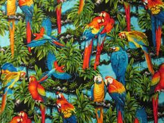 Hey, I found this really awesome Etsy listing at https://www.etsy.com/listing/113497937/realistic-parrots-birds-tropical-parrot
