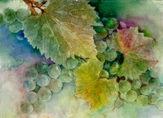 Grapes II • Blue-green by Judy Dobbs - http://pens.zenfolio.com/p404267128