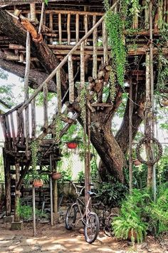 Looks like a spot just primed for all kinds of imagination and adventure! #treehouse #whimsy | Via Lunar Forest Nymph on Tumblr