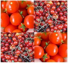 Lawn & Garden Red Currant Spoon Tomato Seeds - Heirloom - World Smallest Tomatoes 60 - 75 Days & Garden Small Tomatoes, Heirloom Tomatoes, Growing Tomatoes, Red Peas, Tomato Seeds, Planting Vegetables, Veggies, Tomato Garden, Garden Seeds