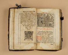 Один из немногих переживших войны, революции, пожары и стихийный бедствия, уцелевший стародрук изданый в типографии Киево-Печерской лавры.