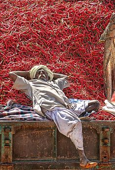--India-- by Heather Prince (Hartkamp).Great photograph of Rajasthan vendor napping on a 'hot' bed of chillies that are about to be dried. If hands burn after cutting these imagine what he feels! We Are The World, People Around The World, Wonders Of The World, Around The Worlds, Cultures Du Monde, World Cultures, Varanasi, Foto Top, Foto Poster