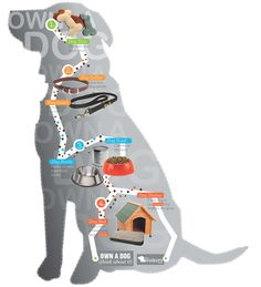Own a Dog (Infographic and products) by Katie Divine, via Behance  #bionic  www.bionicplay.com