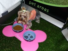 Artificial grass is incredibly safe for pets, and will help prevent them from tracking dirt in your home.