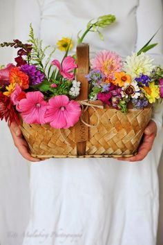 rectangular wicker basket with mixed flowers, Ana Rosa. My Flower, Fresh Flowers, Wild Flowers, Beautiful Flowers, Happy Flowers, Summer Flowers, Flower Quotes, Flower Basket, Floral Arrangements