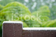 Rain, New Zealand royalty-free stock photo