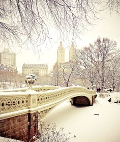 New York City - Winter - Central Park in the Snow : Enjoy a fairy-tale view of one of Central Park's most beautiful bridges as snow falls.