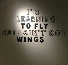 """""""Learning to Fly"""" by Tom Petty and The Heartbreakers ♥ My favorite TPATH song! (Also, this is my icon on tumblr.)"""