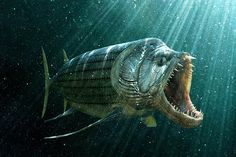 "Xiphactinus (from Latin and Greek for ""sword-ray"") is an extinct genus of large, 4.5 to 6 m (15 to 20 feet) long predatory marine bony fish that lived during the Late Cretaceous."