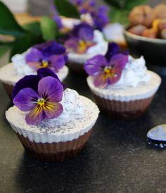 Raw Tiramisu Cupcake Cheesecakes (Vegan & Gluten Free)