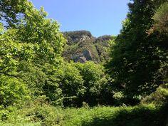 Trekking-e-passeggiate-un-modo-tutto-nuovo-per-scoprire-Ischia-lisola-verde....jpg (960×720)