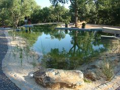Claudia Schwarzer from Bio Piscinas gives us a detailed account of her own experience of designing and creating natural swimming pools.