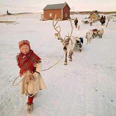 Reindeer and sweet girl leading them. Nordic Christmas.
