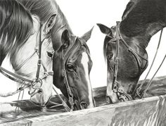"""Happy Hour by Mary Ross Buchholz Graphite & Charcoal ~ 16"""" x 21.5"""""""