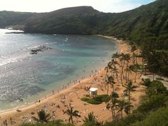 Hanauma Bay, Oahu/ Hawaii...is a must when visiting Hawaii. Loved it.