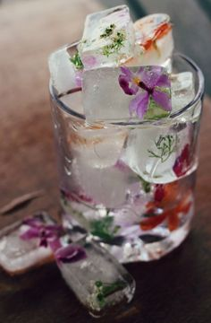 Gelo e flores