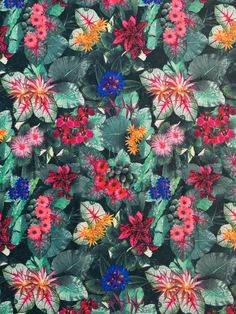 Medium weight polyester drapey crepe-like double jersey. Soft and slinky double jersey with very slight crepe texture. Excellent widthwise stretch and good stre Forest Design, Best Stretches, Dressmaking, Print Patterns, Tropical, Colours, Texture, Floral, Fabric