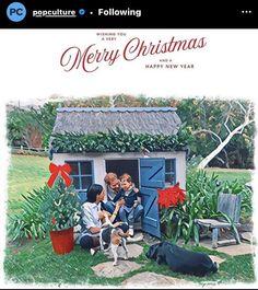 Family Christmas Cards, Small Christmas Trees, Christmas Messages, Christmas Wishes, Holiday Cards, Merry Christmas, Meghan Markle, Homemade Ornaments, Enjoy The Sunshine