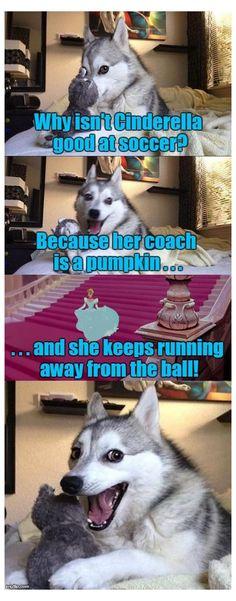 Dog Jokes, Puns Jokes, Funny Dog Memes, Crazy Funny Memes, Really Funny Memes, Funny Relatable Memes, Dog Humor, Puns Hilarious, Bad Memes
