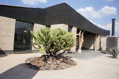 Galería - Studio House Sabinos / Juan Carlos Loyo Arquitectura - 22