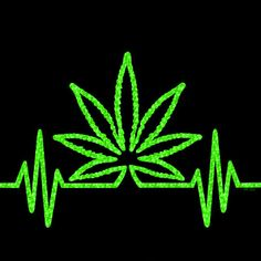 If you are looking to buy high quality CBD and Accessories online then this is the best store for you. Cannabis Wallpaper, Weed Wallpaper, Marijuana Art, Marijuana Leaves, Weed Pictures, Stoner Art, Stoner Meme, Stoner Humor, Phone Wallpapers