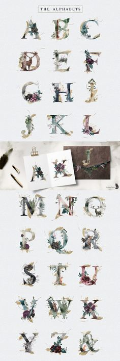 Into The Wild by AurAandTheCat on the Wild is an collection inspired by nature, with gorgeous flowers and the beauty of pine woodland. Let's every Wild Alphabet bring you to another forest scene. Just imagine! Watercolor Illustration, Graphic Illustration, Watercolor Art, Font Design, Graphic Design, Design Art, Paper Logo, Floral Illustrations, Floral Bouquets