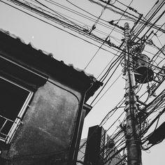 "Masashi Wakui's ""Electric Wires"""