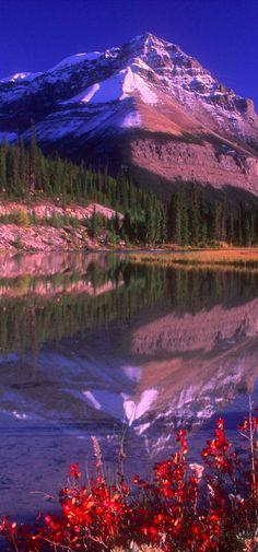 Mountain lake near Sunwapta Falls in Jasper National Park, Alberta, Canada • photo: Bilderbuch / DesignPics