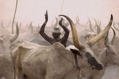 Уникални кадри от живота на народа Динка / Powerful Photographs Show The Daily Life of The Dinka People Of Southern Sudan