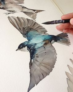 f you are a fan of watercolors like me these paintings will enchant you! Magnificent watercolor paintings by Watercolor Drawing, Watercolor Bird, Painting & Drawing, Watercolor Paintings, Watercolors, Watercolor Artists, Gouache Painting, Watercolor Design, Watercolor Portraits