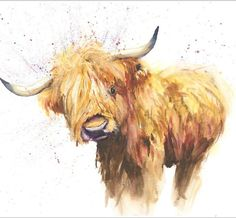 Limited Print of ORIGINAL watercolour painting of HIGHLAND COW by Helen Rose 147