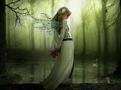 I am a Fairy