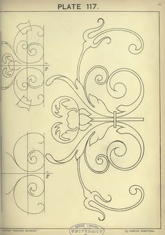 Cusack's freehand ornament, 1895. Plate 117