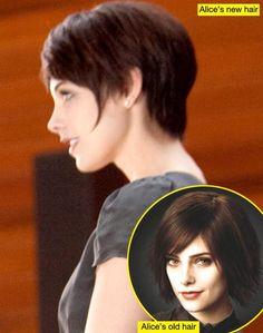 Ashley Greene's 'Breaking Dawn' Hairstylist Explains Alice Cullen's More Modern 'Do!