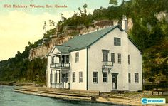 Wiarton postcard post card - Fish hatchery, Wiarton, ON