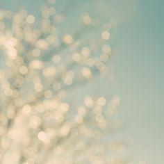 twinkle twinkle by Kitty Rogers