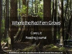 This is a Powerpoint of reading journal responses and activities that go with Where the Red Fern Grows novel.