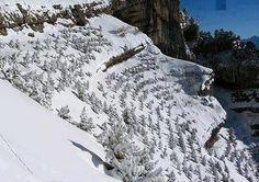 117 Meilleures Images Du Tableau Paysage De Montagne Beautiful