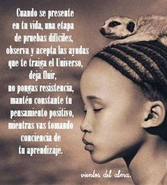 #viento del alma #aprender# Buda Quotes, Inner Peace, Buddhism, Law Of Attraction, Poems, Relax, Wellness, Hacks, Truths
