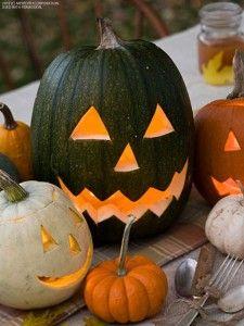 Pumpkin decor - bhgrelife.com