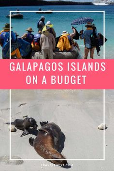 galapos islands on a budget The Galapagos Islands on a budget
